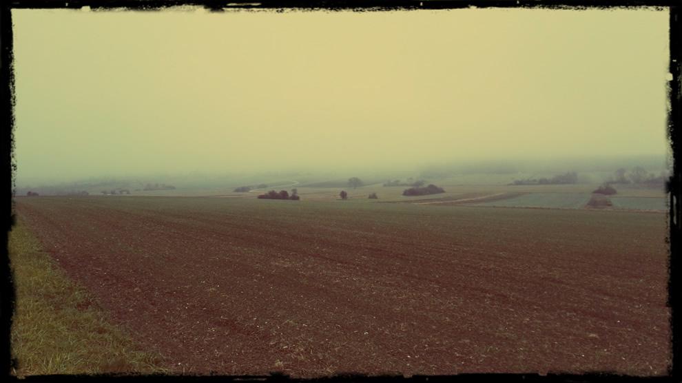 Nebel am Marzer Kogl...